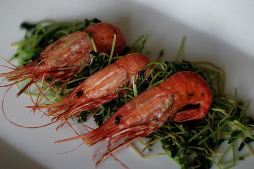 Spot Prawns with Sauteed Pea Shoots