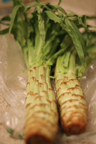asparagus_leaf